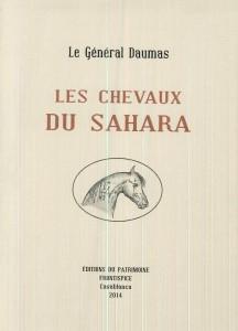 Chevaux du Sahara